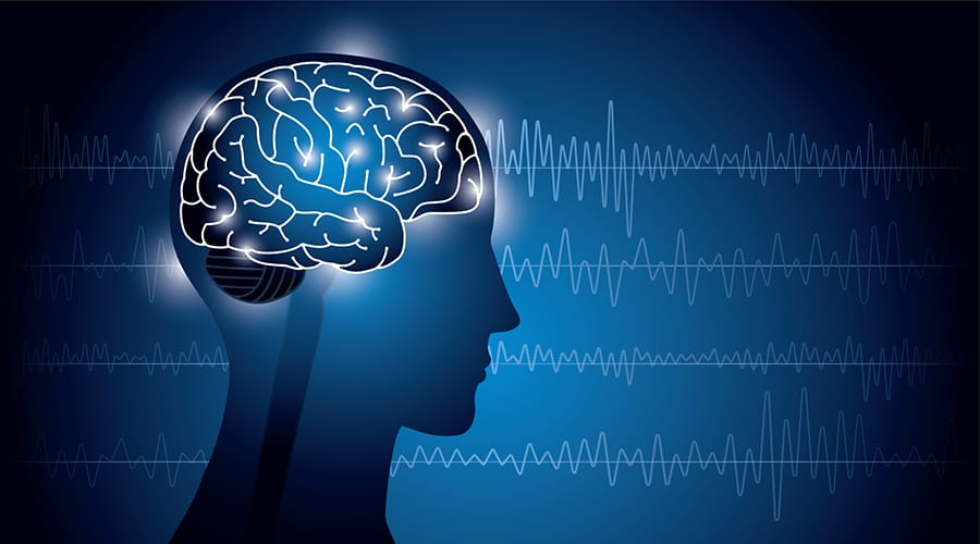 Image result for brain signals